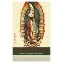 Das heilige Bild und die Botschaft unserer lieben Frau von Guadalupe
